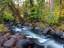 Water and rocks. Water flowing in minnesota forest at autumn Royalty Free Stock Image