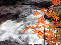 Water and rocks. Water flowing among rocks at autumn; Temperance river Stock Image