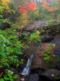 Water and rocks. Water flowing among rocks at autumn Stock Photos