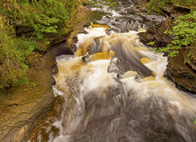 Water and Rocks in a Forest Stream Stock Photos