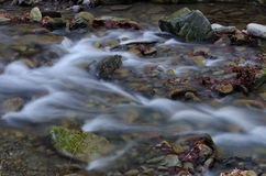 Water with rocks. Small waterfall with rocks and leafs Royalty Free Stock Photography