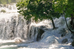 Water on the rocks and a tree Royalty Free Stock Photos