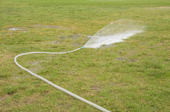 Water from rubber tube  lawn Stock Photography