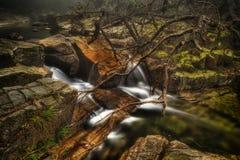 Water running Stock Image