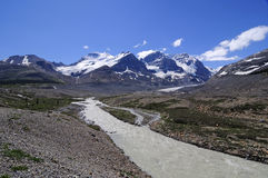 Water running down from Athabasca Glacier Royalty Free Stock Photo