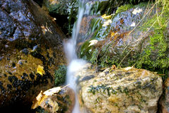 Water running down mossy rocks. Some water running down mossy rocks Stock Image