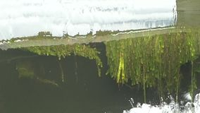 Water running down a weir. underwater plants visible. stock video footage