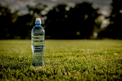 Water after running on green grass field Royalty Free Stock Photo