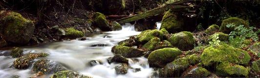 Water runs over the stones stock photos
