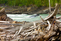 Water rushing during springtime in the rockies Royalty Free Stock Image