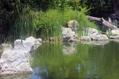 At Water's Edge. Rocks and tall grass line the water at the lakes edge Stock Photo