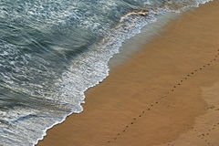 Water and sand. Ocean water and sand with footprints on it Royalty Free Stock Images