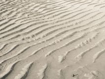 Water and sand long the shoreline of an Italian beach Stock Images
