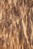 Water and Sand patterns royalty free stock photography