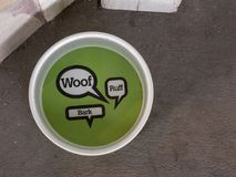 Water saucer for dogs. Woof design. Water saucer for dogs sitting outdoors. Woof, ruff, bark design Royalty Free Stock Image