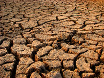 Water Scarcity. Dry land of India starving for some water Royalty Free Stock Photo