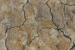 Water scarcity. Parched sandy soil with cracks Royalty Free Stock Photos