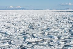 Sheet of ice in the Baltic sea stock photography