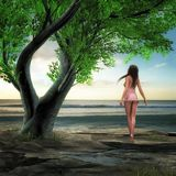 Water, Sea, Tree, Woman, Ausschau Stock Images