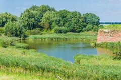 Water See-Waldlandschaft Lizenzfreie Stockbilder