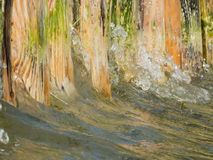 Water on the shore. Close-up water to a wooden shore attachment at the Lake Caldaro Royalty Free Stock Images