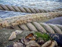 Water, Shore, Grass, Sea stock photos