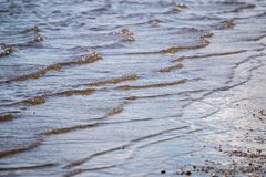 Water shoreline on the beach Royalty Free Stock Image