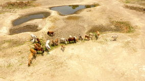 Water shortage in rural areas of Asia Royalty Free Stock Photography