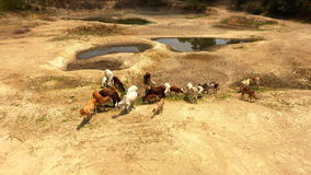 Water shortage in rural areas of Asia Royalty Free Stock Photo