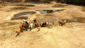 Water shortage in rural areas of Asia Stock Photos