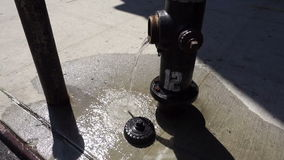 Water from sidewalk fire hydrant stock video