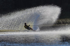 Water-Ski Spray Teenager. Sun reflections capturing the contrast of skier in black and water spray wall white Royalty Free Stock Photos