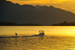 Water-skiing at sunset Stock Photography