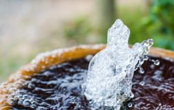 Water in small fountain flowing up high from pipe and form interesting different shape stock image