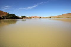 Water in Sossusvlei Stock Image