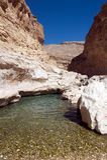 Water source in the desert - Oman. Wadi Bani Khalid - Water source in the desert - Omani oasis stock image