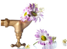 Water source of life Royalty Free Stock Photo