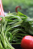 Water spinach & tomato Royalty Free Stock Photography