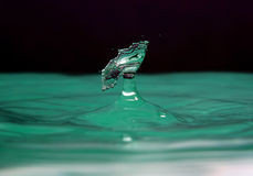 Water splash. Movement of water is frozen by means of flash Royalty Free Stock Photography