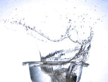 Water splash. Ing in a glass Stock Image