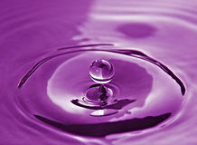 Water Splash. A water splash with drops in mauve/magenta color stock images
