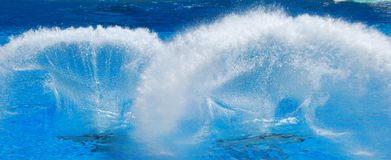 Water splash. Brilliant water texture from swimming pool on sunny day Stock Image