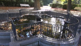 Water splash in beautiful  historical fountain in October park stock video