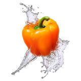 Water splash with bell pepper isolated Stock Image