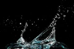 Water splash  on black background. Free space for text Stock Photography