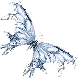 Water splash butterfly. Butterfly made of water splashes isolated Royalty Free Stock Image