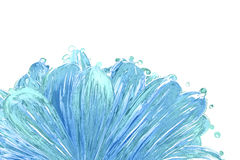 Water splash flower closeup Stock Images