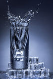 Water splash in a glass. Stock Images