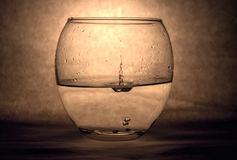 Water Splash in Glass Pot Royalty Free Stock Photos