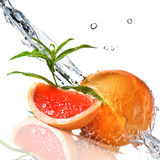 Water splash on grapefruit with mint Stock Image